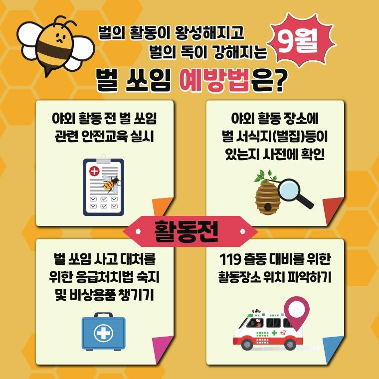 벌쏘임 예방법 4가지 안내 카드뉴스