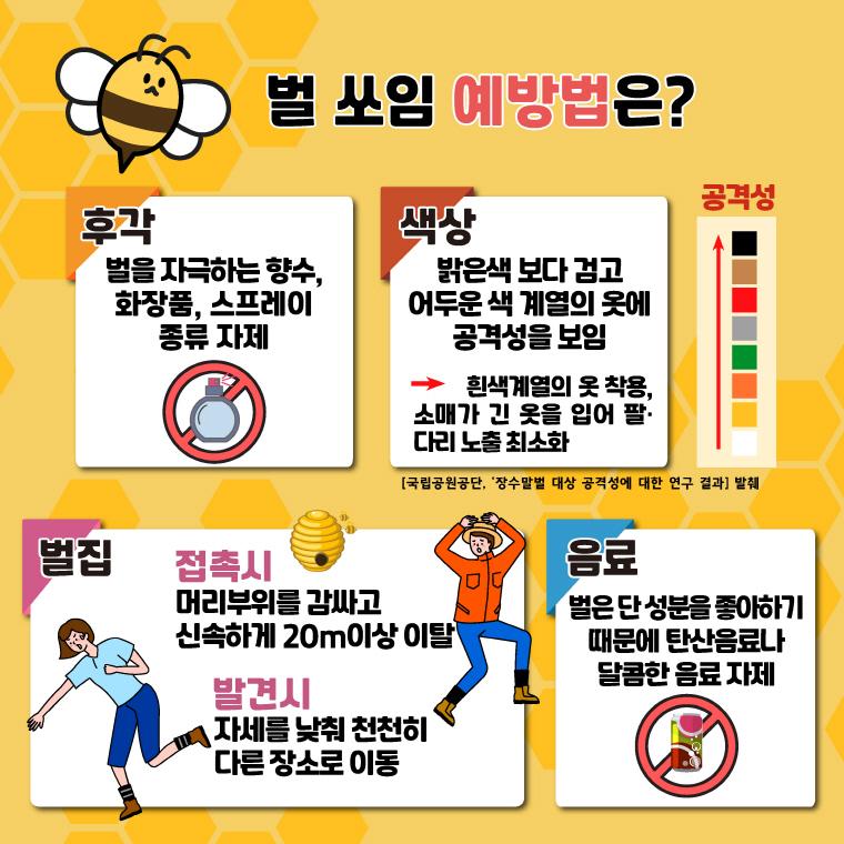 벌쏘임 예방법 안내 2 카드뉴스